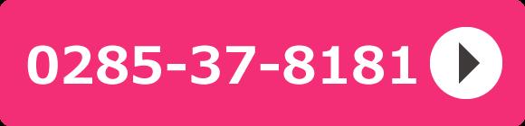 受付電話番号 0285-37-8181
